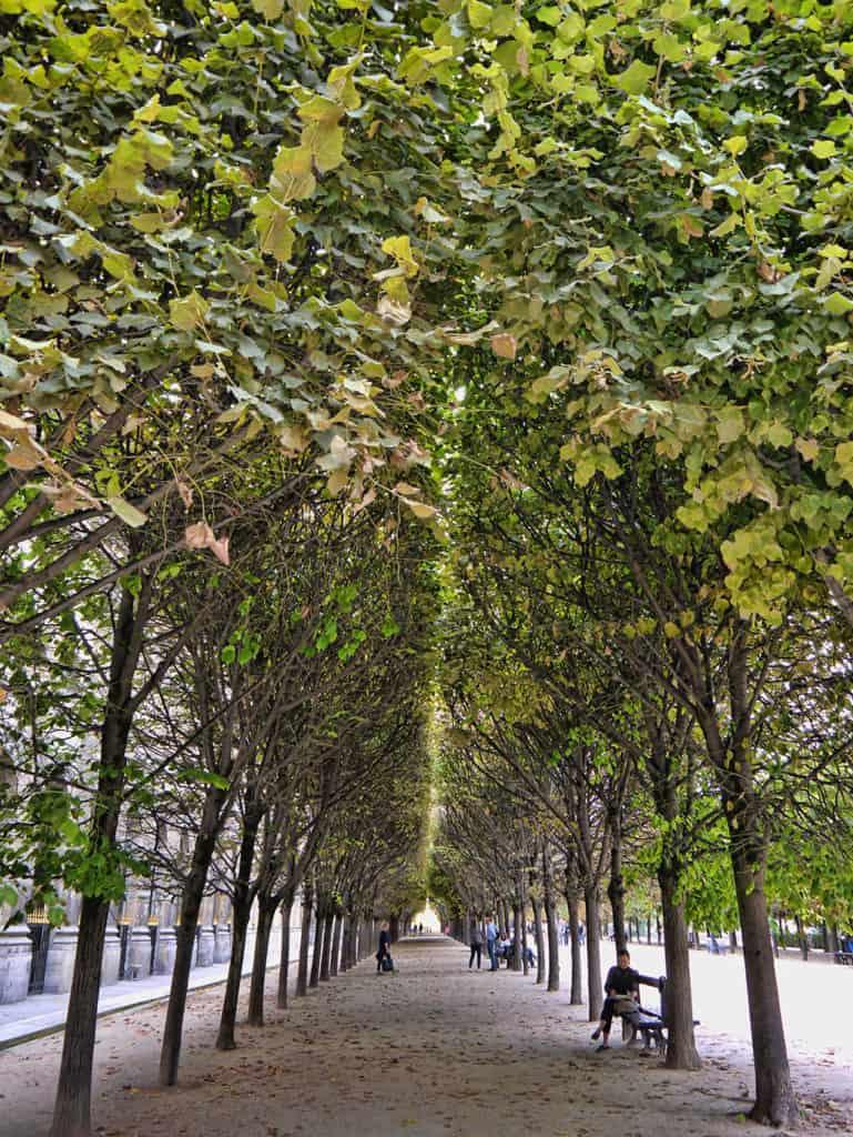 Palais-Royal garden in Paris, France