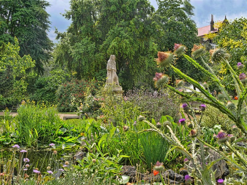 Best places to relax in London - Chelsea Physic Garden