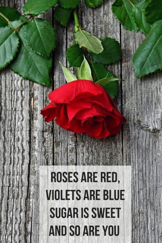 Sweet valentine poems for him