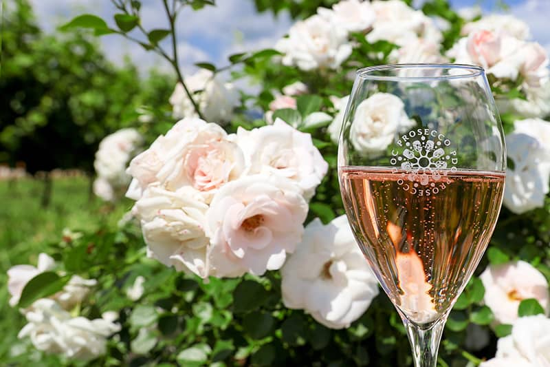 Pink Prosecco DOC Rose