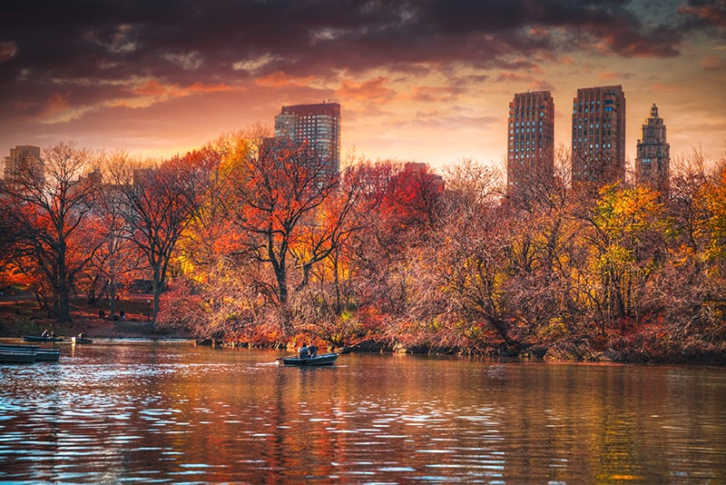 Central Park panorama in New York City