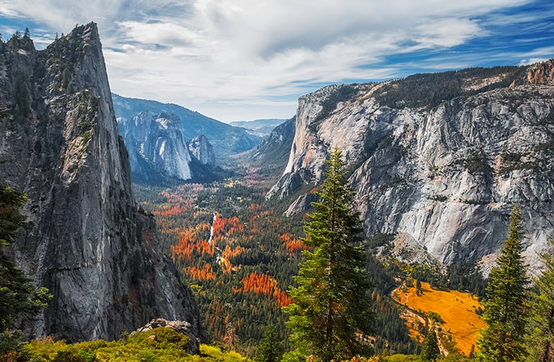 View of the valley of Yosemite National Park, USA